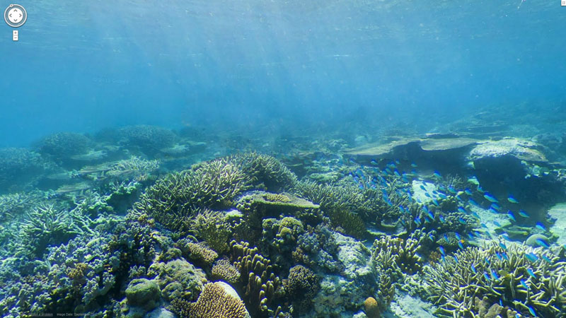 great barrier reef google map street view wilson island Google Adds First Underwater Panoramas to Maps and Street View