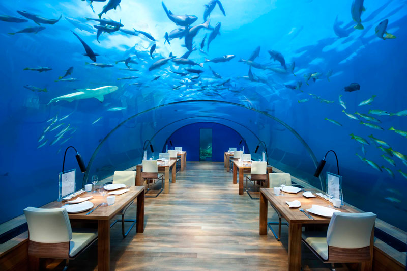 ithaa underwater restaurant conrad maldives rengali island resoirt 1 Ithaa: The Underwater Restaurant in the Maldives