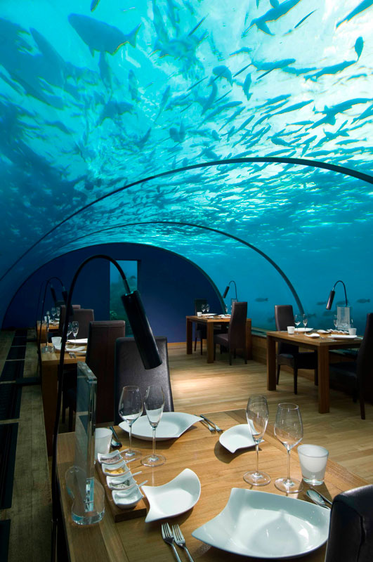 ithaa underwater restaurant conrad maldives rengali island resoirt 2 Ithaa: The Underwater Restaurant in the Maldives