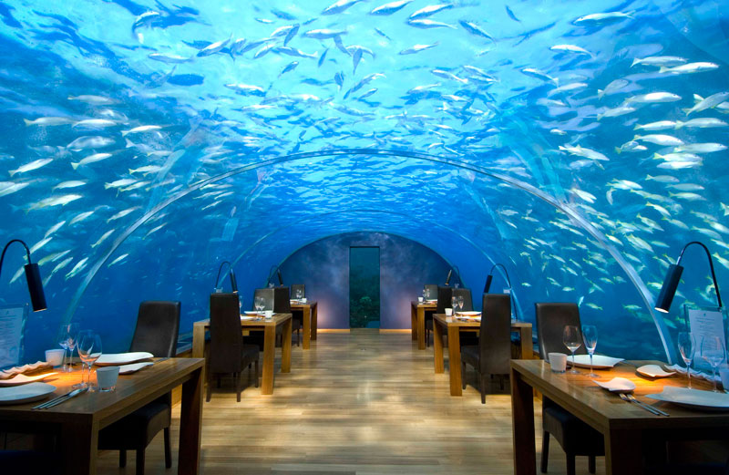 ithaa underwater restaurant conrad maldives rengali island resoirt 3 A Restaurant Beside a Waterfall