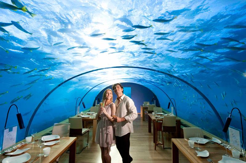 ithaa underwater restaurant conrad maldives rengali island resoirt 5 Ithaa: The Underwater Restaurant in the Maldives