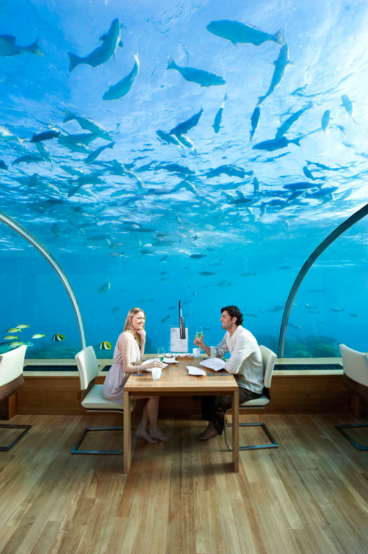 ithaa underwater restaurant conrad maldives rengali island resoirt 6 Ithaa: The Underwater Restaurant in the Maldives