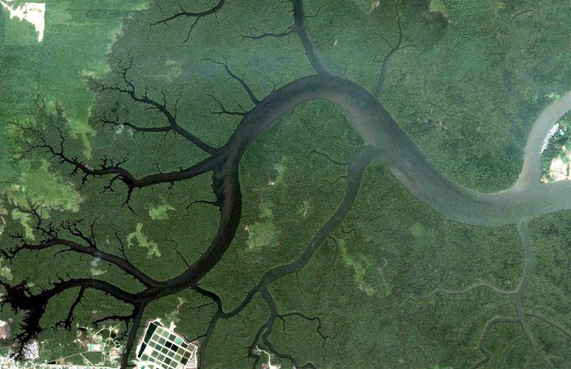 kuching-malaysia-citra-satelit-google-earth-fractals
