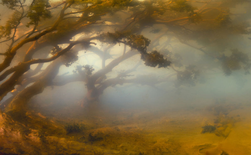mini landscapes inside a tank that looks like paintings kim keever 5 Amazing Model Landscapes That Look Like Paintings
