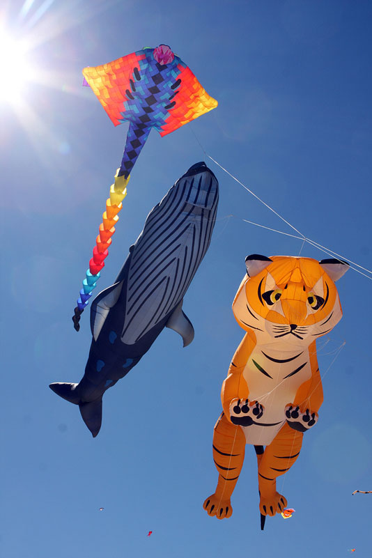 how to make a chinese kite pdf
