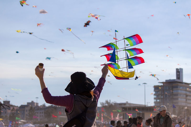 The Amazing Kites at the Bondi Beach Festival of theWinds