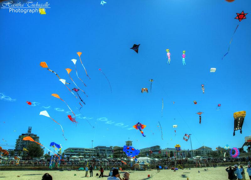 bondi beach festival of the winds 2012 The Amazing Kites at the Bondi Beach Festival of the Winds