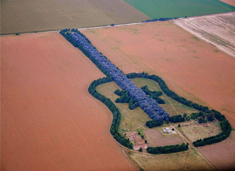 man plants guitar shaped forest for wife in pampas argentina 5 The Dry Stone Tree Wall that Love Built