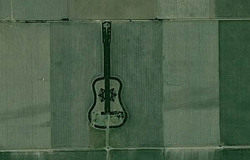 man plants guitar shaped forest for wife in pampas argentina 6 Man Plants Guitar Shaped Forest in Memory of His Wife
