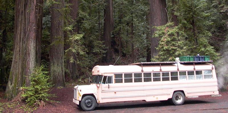 school bus conversion into mobile home 3 School Bus Converted Into Mobile Home