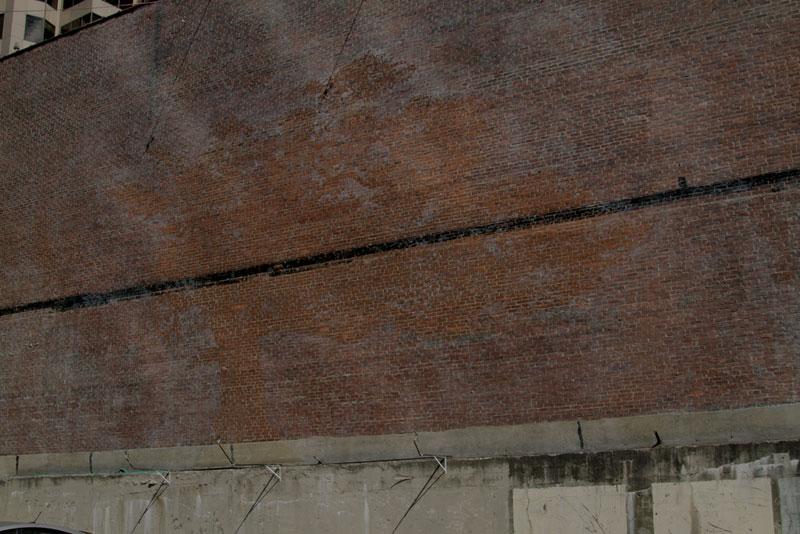 water activated oak tree mural adam niklewicz hartford ct 11 The Water Activated Oak Tree Mural in Hartford