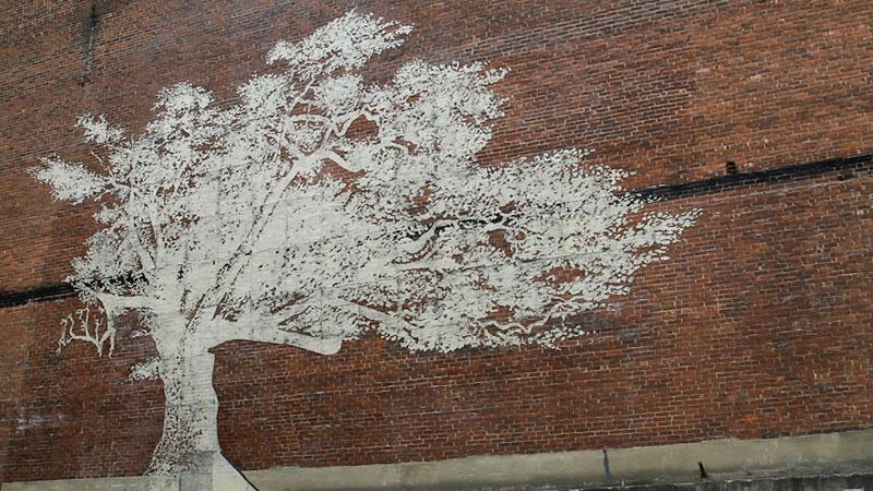 water activated oak tree mural adam niklewicz hartford ct 3 The Water Activated Oak Tree Mural in Hartford