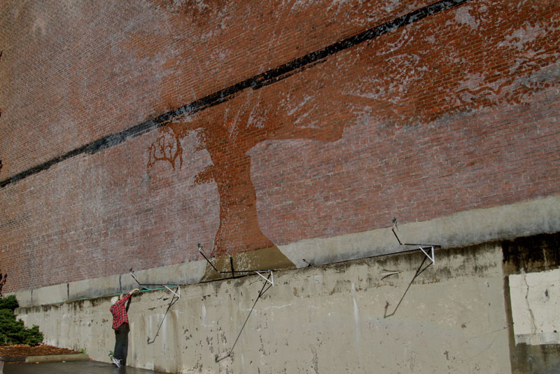 water activated oak tree mural adam niklewicz hartford ct 5 The Water Activated Oak Tree Mural in Hartford