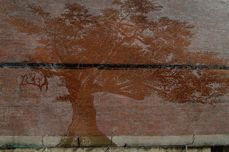 water activated oak tree mural adam niklewicz hartford ct 6 The Water Activated Oak Tree Mural in Hartford