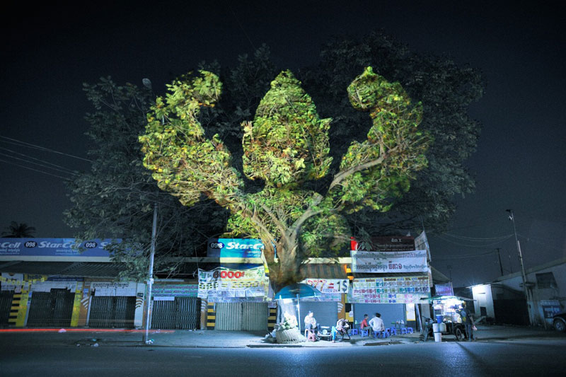 3d images projected onto trees clement briend 2 Haunting 3D Images Projected Onto Trees