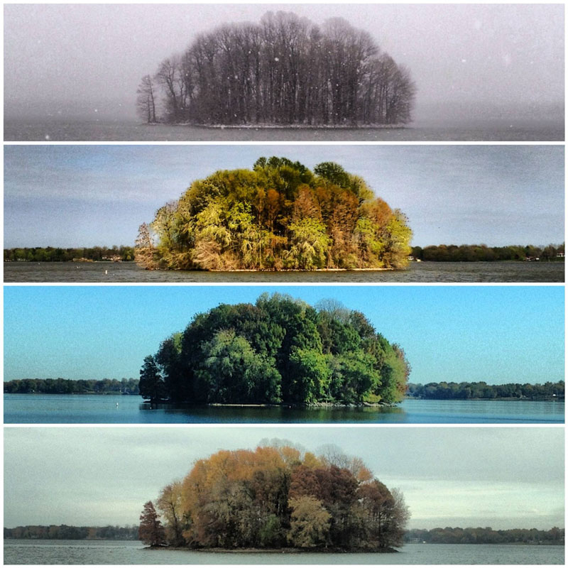 capturing the four seasons in one picture on an island lake springfield illinois 1 Capturing the Four Seasons in a Single Image
