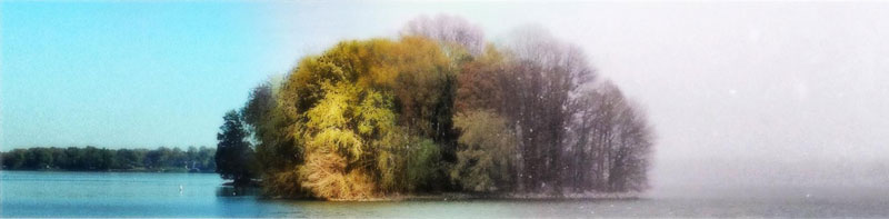 capturing the four seasons in one picture on an island lake springfield illinois 2 Capturing the Four Seasons in a Single Image