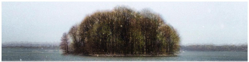 capturing the four seasons in one picture on an island lake springfield illinois 3 Capturing the Four Seasons in a Single Image