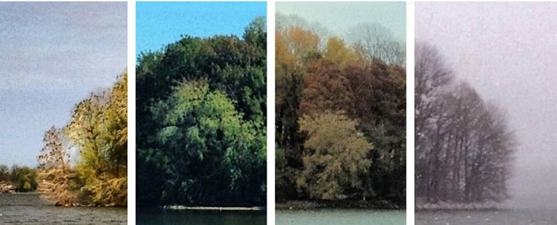 capturing the four seasons in one picture on an island lake springfield illinois 9 Capturing the Four Seasons in a Single Image