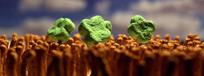 cereal landscapes by ernie button The Secret World of Cereal Landscapes