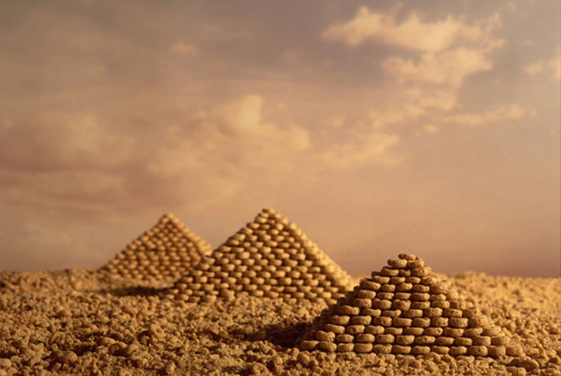 The Secret World of Cereal Landscapes