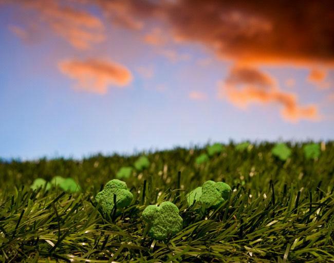 clover patch ernie button 2 The Secret World of Cereal Landscapes