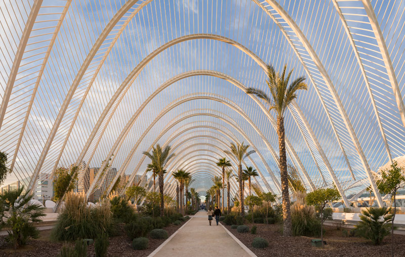 lumbracle in the ciutat de les arts i les ciencies in valencia spain Picture of the Day: The Umbracle in Valencia, Spain