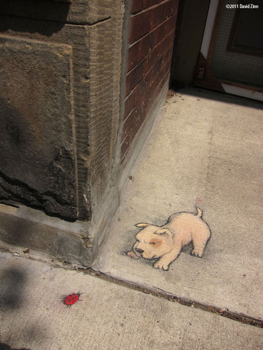 standoff by david zinn The Incredible 3D Chalk Art of David Zinn