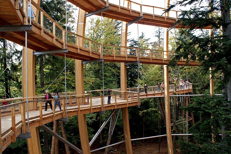 worlds longest tree top walk bavarian forest national park baumwipfelpfad 13 The Longest Tree Top Walk in the World