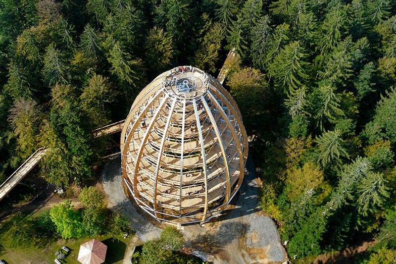 worlds longest tree top walk bavarian forest national park baumwipfelpfad 20 This Couple Built a Real Life Ewok Village in Costa Rica
