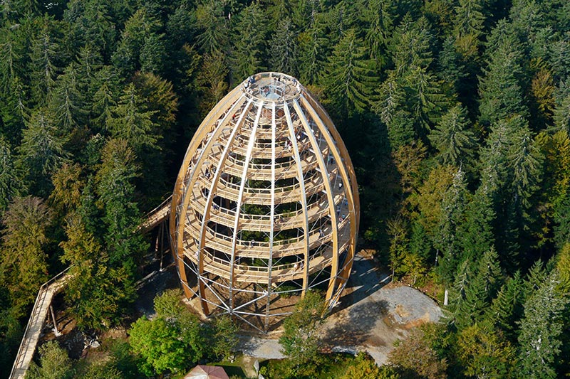 worlds longest tree top walk bavarian forest national park baumwipfelpfad 5 The Longest Tree Top Walk in the World