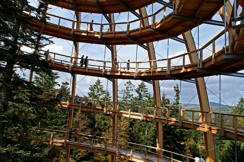 worlds longest tree top walk bavarian forest national park baumwipfelpfad 6 The Longest Tree Top Walk in the World