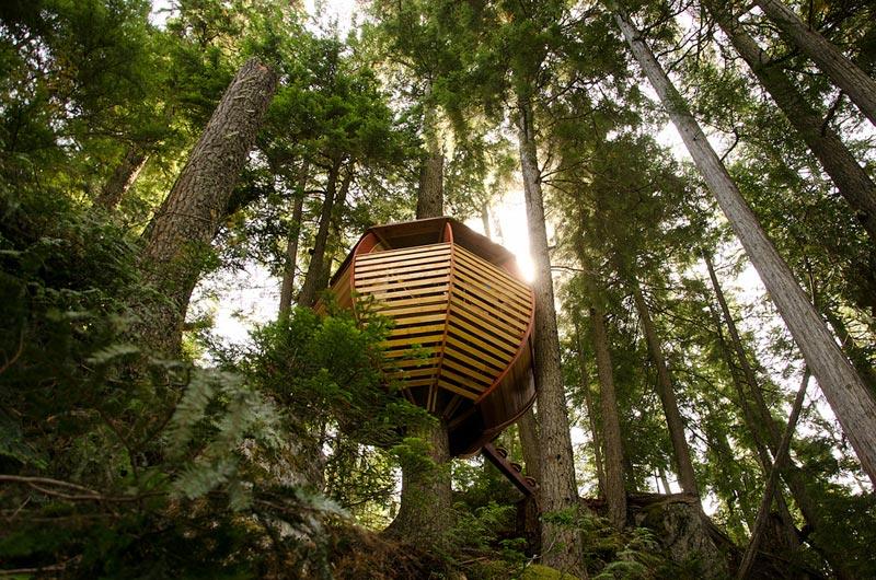 HemLoft secret treehouse hiding in the woods of whistler canada (3)