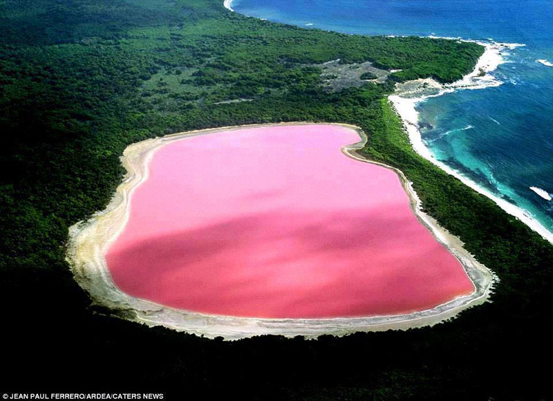 Lake Hillier: The Pink Lake in Australia