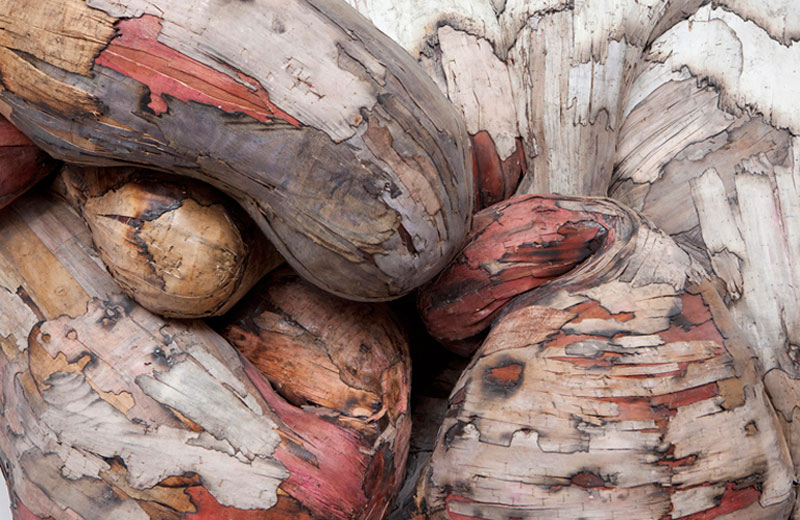 organic wood sculptures henrique oliveira everton ballardin (1)