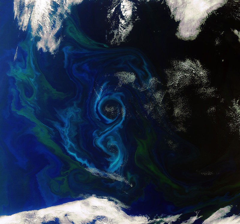Picture of the Day: Figure 8 Algal Bloom from Space