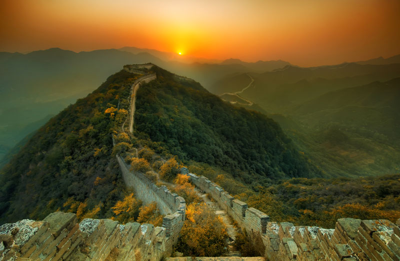 abandoned great wall of china nature overtaking growing over The Top 75 Pictures of the Day for 2013