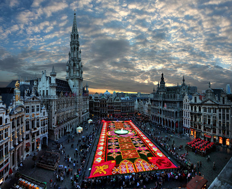 Picture Of The Day Brussels Flower Carpet 171 Twistedsifter