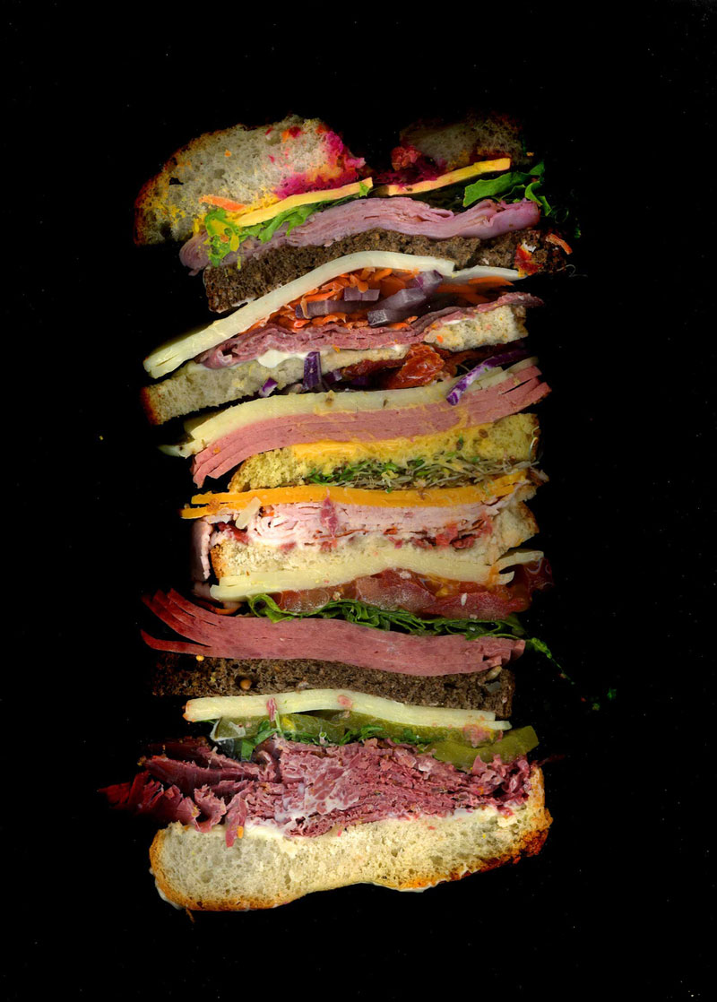 high quality cross-section sandwich scans by jon chonko scanwiches (9)