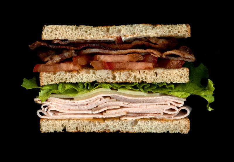 high quality sandwich scans by jon chonko scanwiches (12)