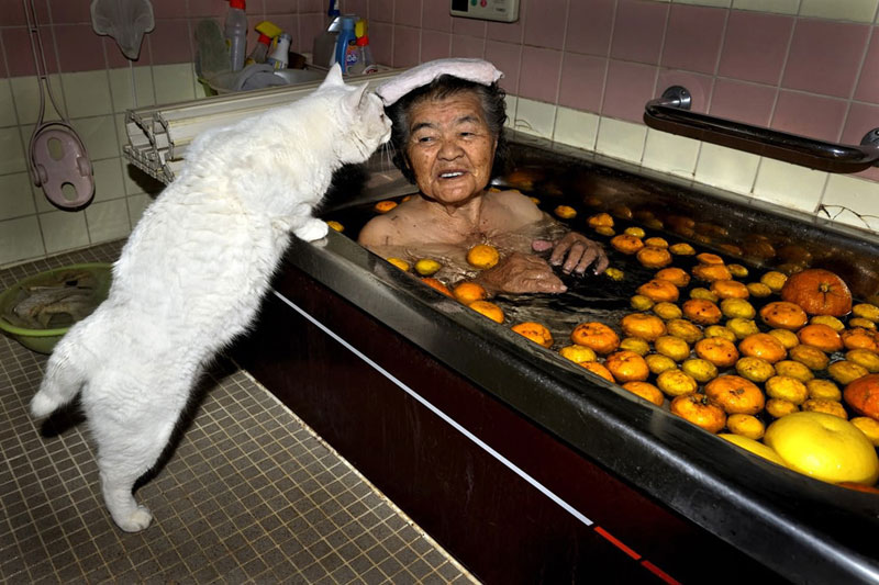 japanese grandma and her cat miyoko ihara (10)