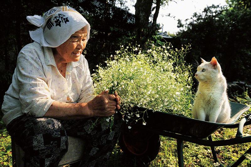 japonés abuela y su gato miyoko ihara (12)