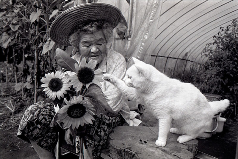 japanese grandma and her cat miyoko ihara (16)