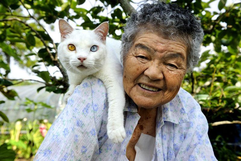 japonés abuela y su gato miyoko ihara (17)