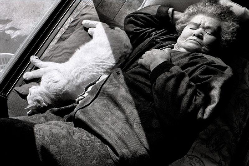 japonés abuela y su gato miyoko ihara (2)