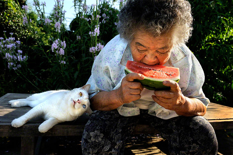 japanese grandma and her cat miyoko ihara (5)