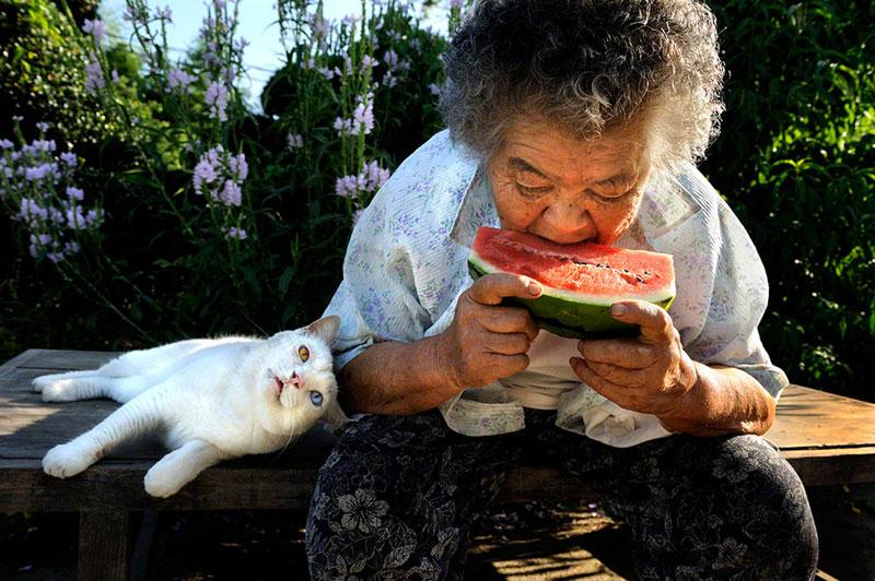 japonés abuela y su gato miyoko ihara (5)
