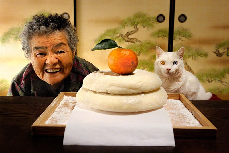 japanese grandma and her cat miyoko ihara 8 How Three Special Friends Stole Our Hearts and Won the Internet
