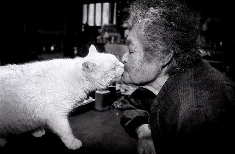 japanese grandma and her cat miyoko ihara (9)