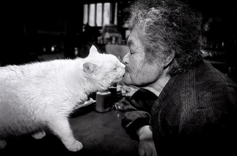 japonés abuela y su gato miyoko ihara (9)